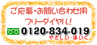 0120-834-019